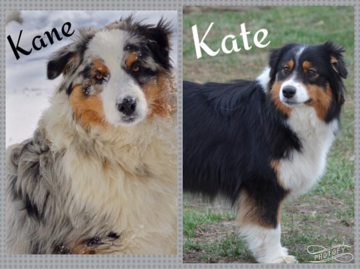 Kane and Kate